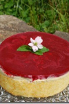 White Chocolate-Mousse Torte with raspberry filling