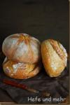 Farmers Bread for Beginners