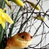 Easter Dove Rolls