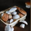 Baiser–Pilze
