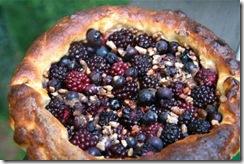 Brioche 3-Citrus-2 Berry Tart