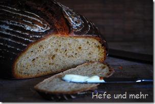 Süsskartoffel-Kichererbsen-Brot (3)