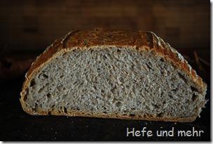 Fallobst-Brot (2)