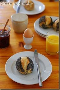 Mohnbrötchen mit süßem Starter (1)
