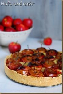 Bratapfelkuchen (1)