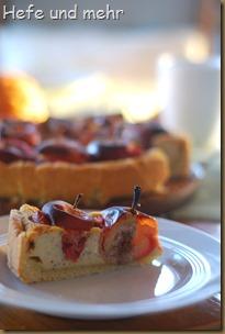 Bratapfelkuchen (2)