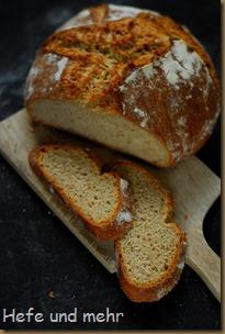 Einfaches Brot (11)