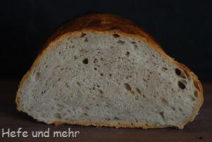 Eingenetztes Brot (1)