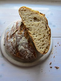 No-Knead Sourdough
