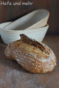 Walnuss und Hafergrütz-Brot (2)