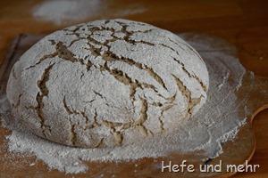 Roggenmischbrot ohne Sauerteig (2)