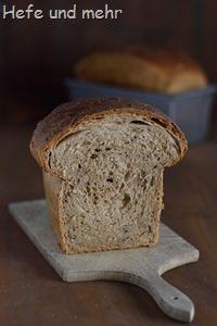 Dinkel-Körner-Toast