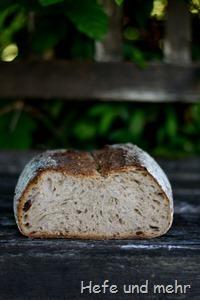 Hafergrütz-Brot mit geröstetem Buchweizen (1)