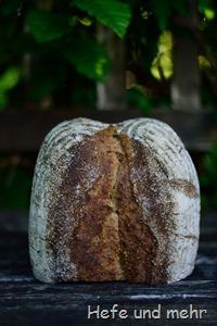 Hafergrütz-Brot mit geröstetem Buchweizen (2)