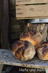 Backes-Brot (2)